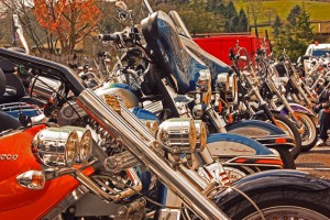 Harley Davidsons at the 'dale