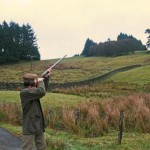 Pheasant shooting at the Annandale